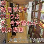 【朗報】東京ビデボ・アウルクリパ、今年は敢行へ